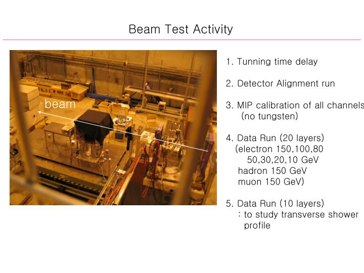 Beam Test Activity