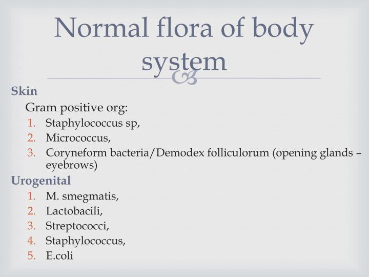 Normal flora of body system