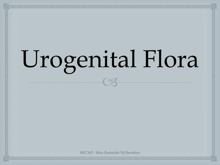 Urogenital Flora