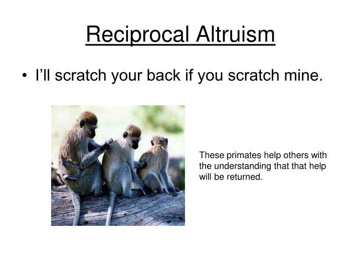 Reciprocal Altruism