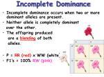 incomplete dominance1