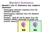 mendel s dominance