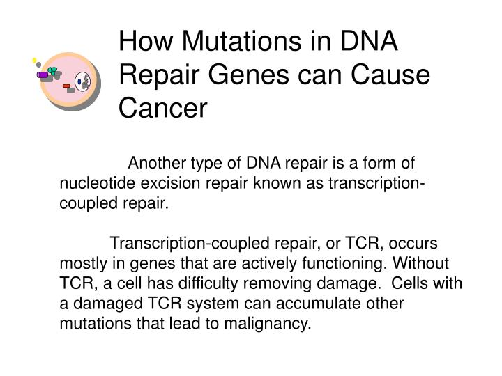 How Mutations in DNA Repair Genes can Cause Cancer