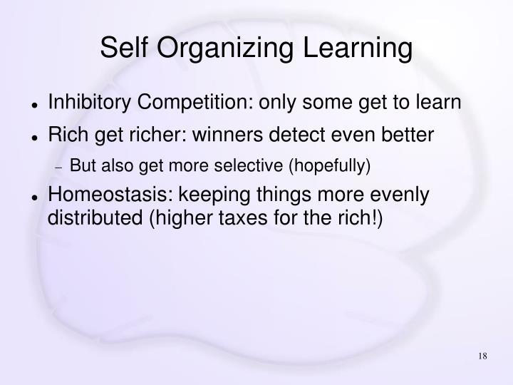 Self Organizing Learning
