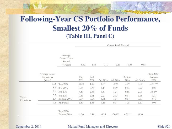 Following-Year CS Portfolio Performance,