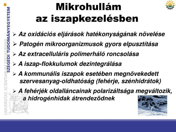Mikrohullám