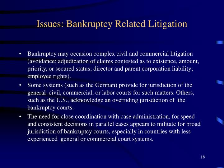 Issues: Bankruptcy Related Litigation