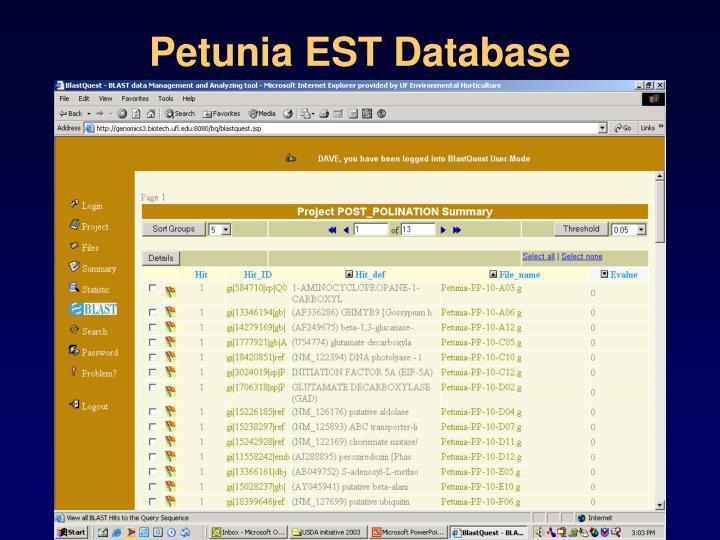 Petunia EST Database