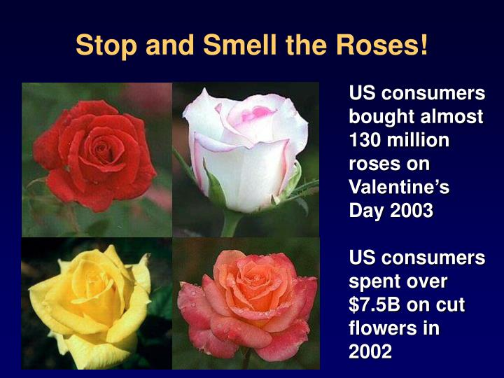 Stop and Smell the Roses!