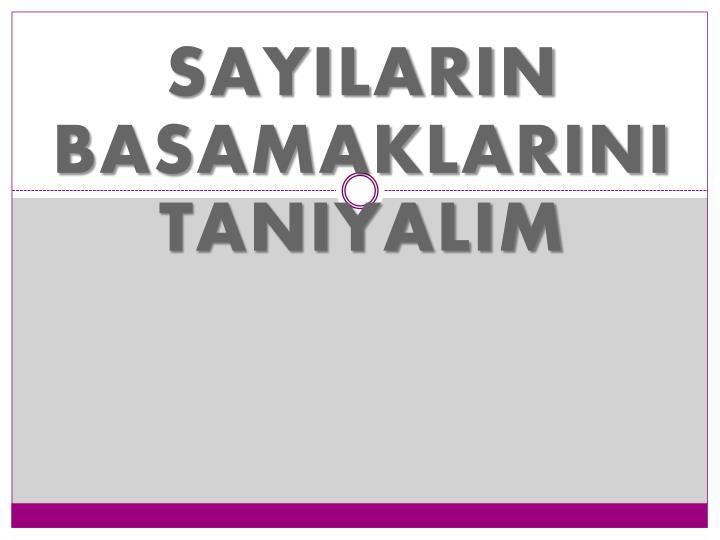 SAYILARIN