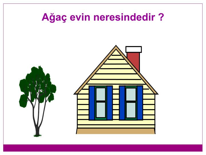 Ağaç evin neresindedir ?