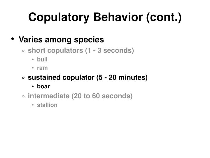 Copulatory Behavior (cont.)