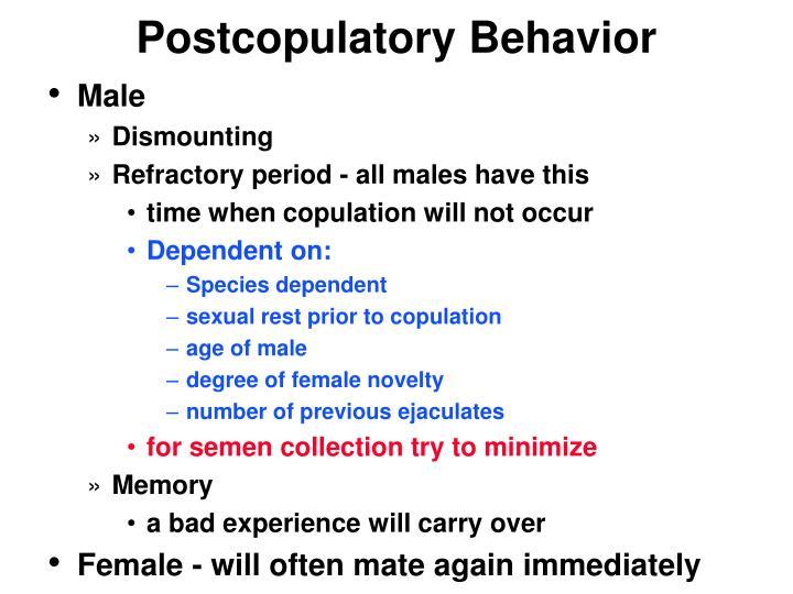 Postcopulatory Behavior