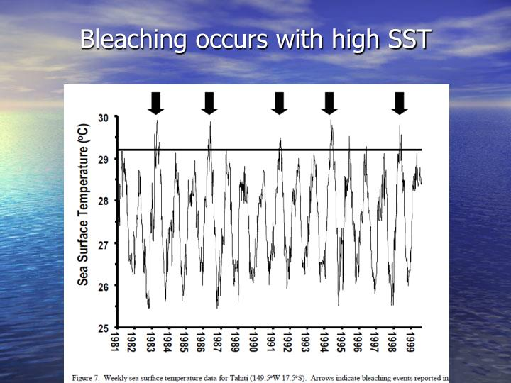 Bleaching occurs with high SST