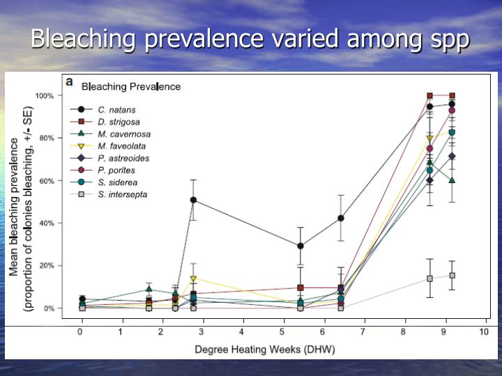 Bleaching prevalence varied among spp