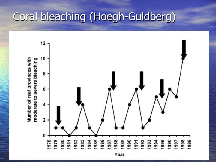 Coral bleaching (Hoegh-Guldberg)