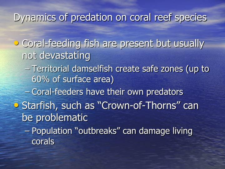 Dynamics of predation on coral reef species