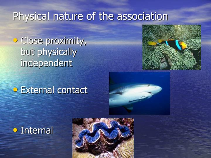 Physical nature of the association