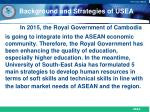 background and strategies of usea