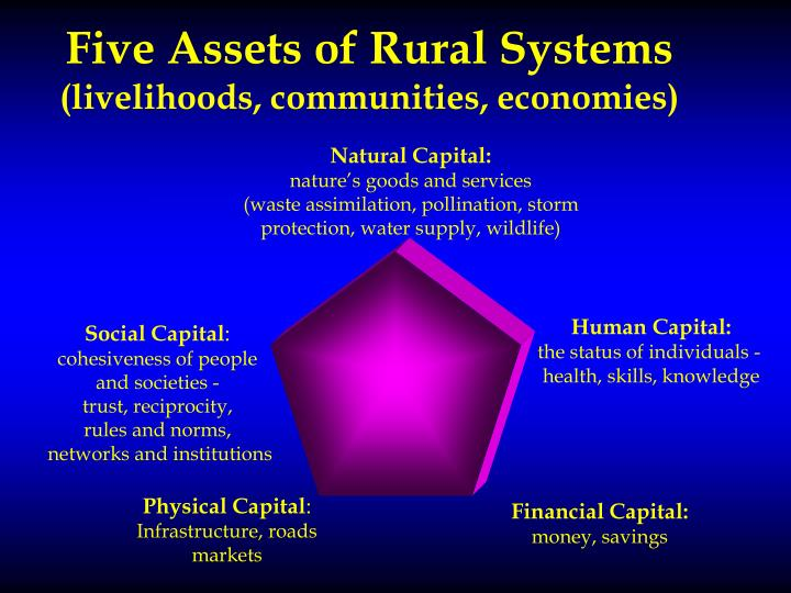 Five Assets of Rural Systems