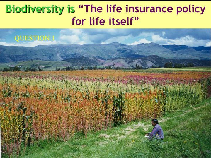 Biodiversity is