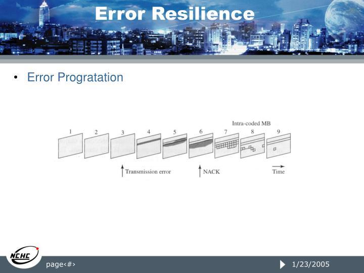 Error Resilience