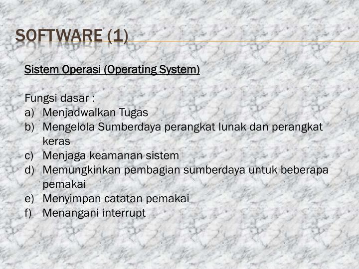 software (1)