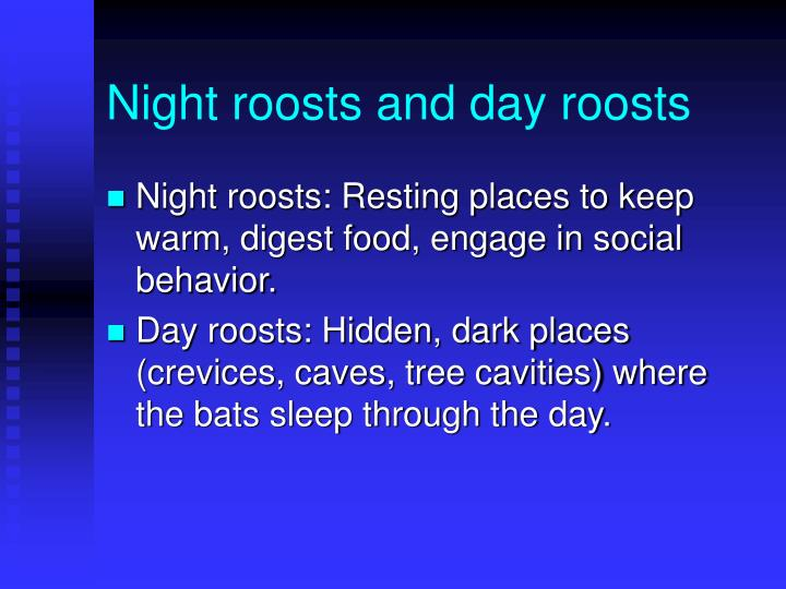 Night roosts and day roosts