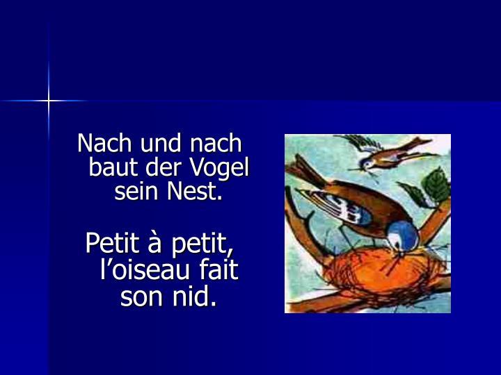 Nach und nach baut der Vogel sein Nest.
