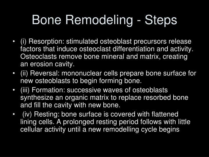 Bone Remodeling - Steps