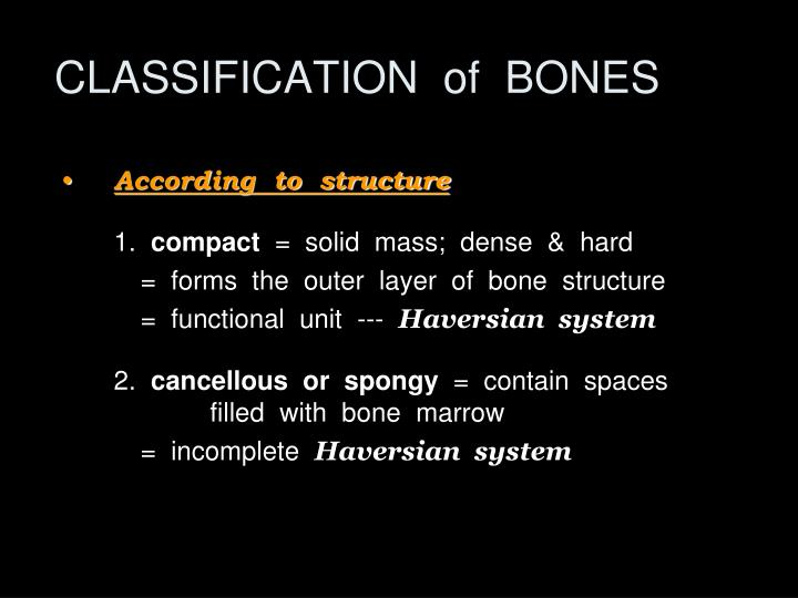 CLASSIFICATION  of  BONES