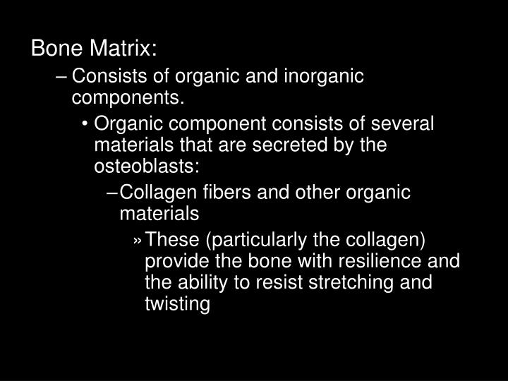 Bone Matrix: