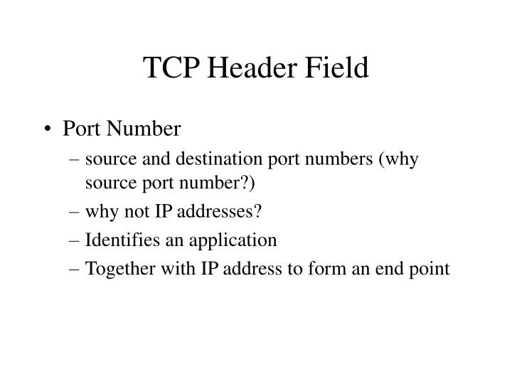 TCP Header Field