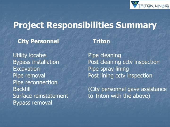 Project Responsibilities Summary