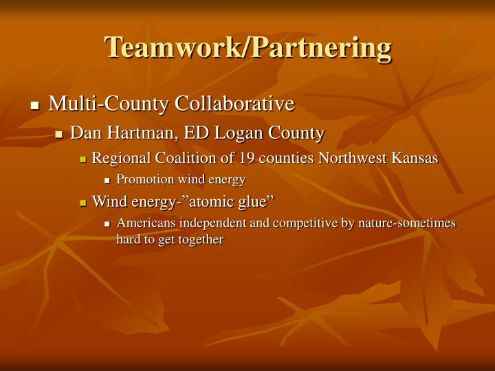 Teamwork/Partnering
