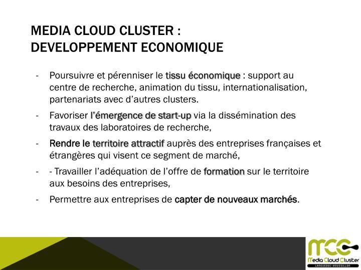 Media Cloud CLUSTER :