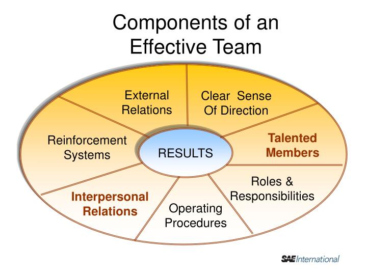 Components of an               Effective Team