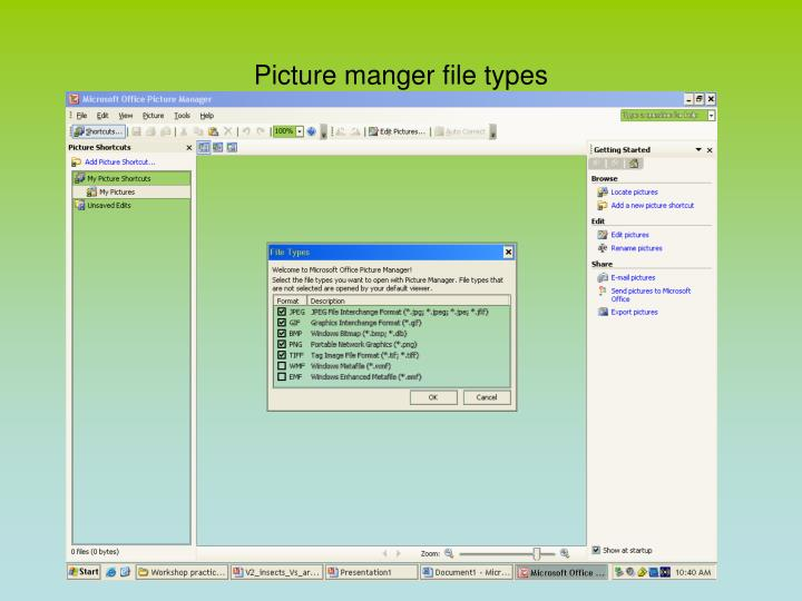 Picture manger file types