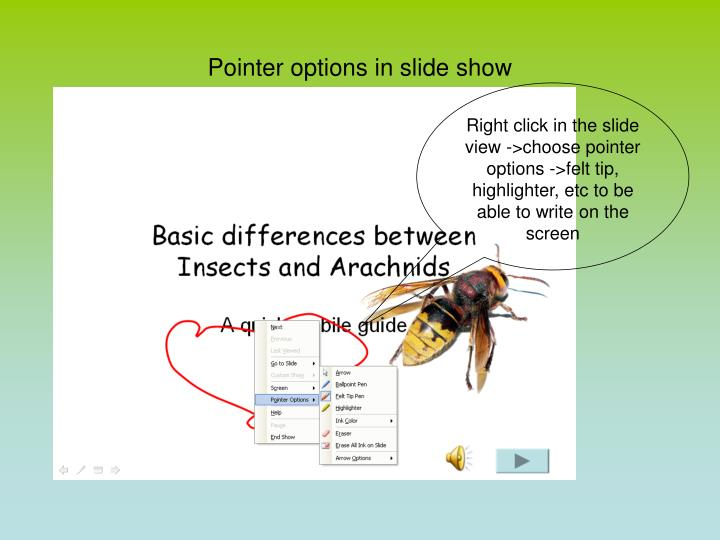 Pointer options in slide show