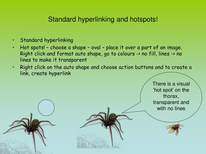 Standard hyperlinking and hotspots!