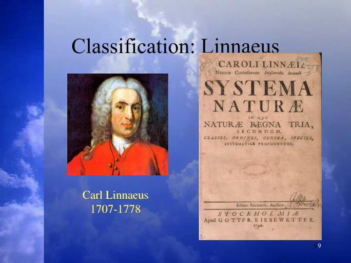 Classification: Linnaeus