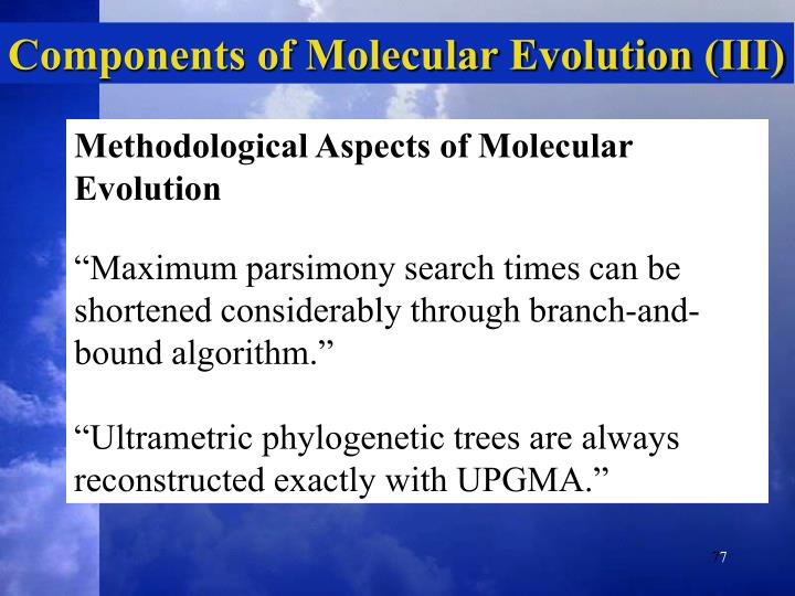 Components of Molecular Evolution (III)
