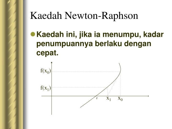 Kaedah Newton-Raphson