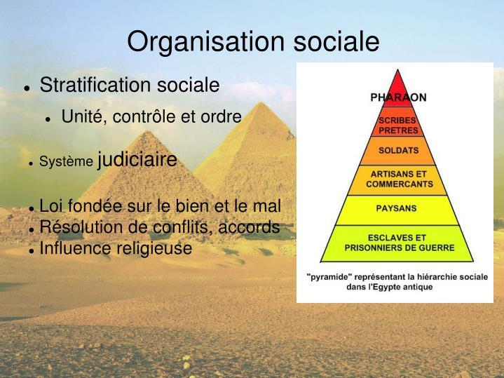 Organisation sociale