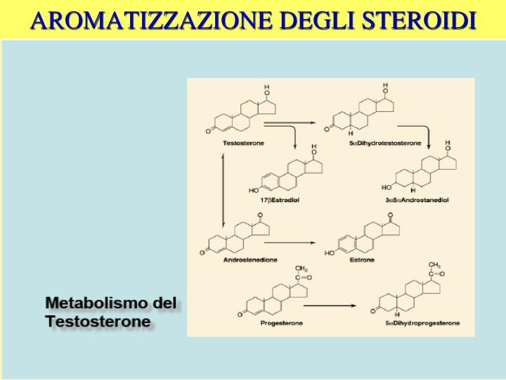 AROMATIZZAZIONE DEGLI STEROIDI