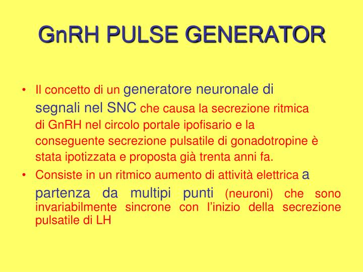 GnRH PULSE GENERATOR