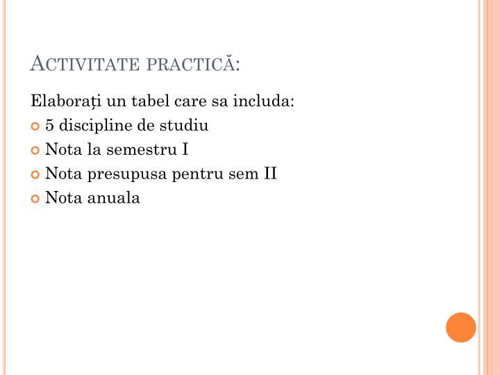 Activitate practică: