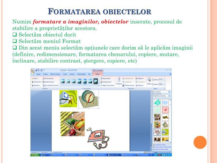 Formatarea obiectelor