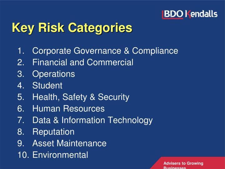 Key Risk Categories