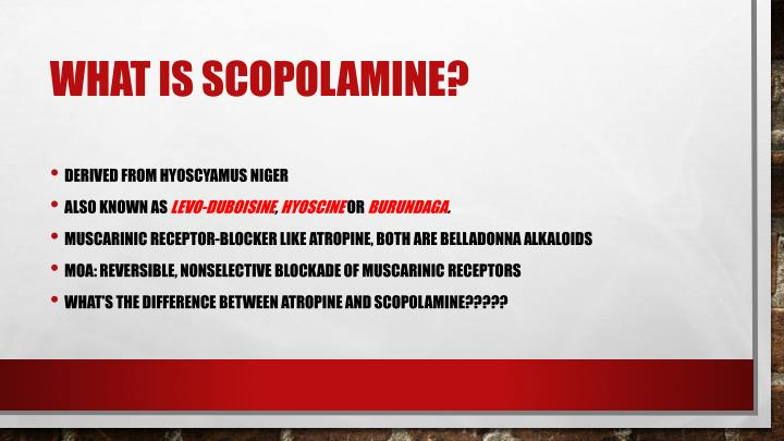 What is scopolamine